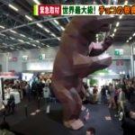 TV-Asahi Salon Du Chocolat